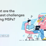 challenges in msp